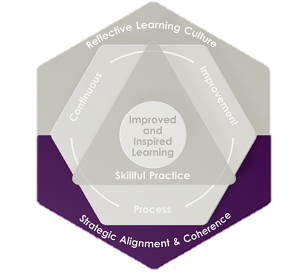 Strategic Alignment and Coherence, T21 Framework